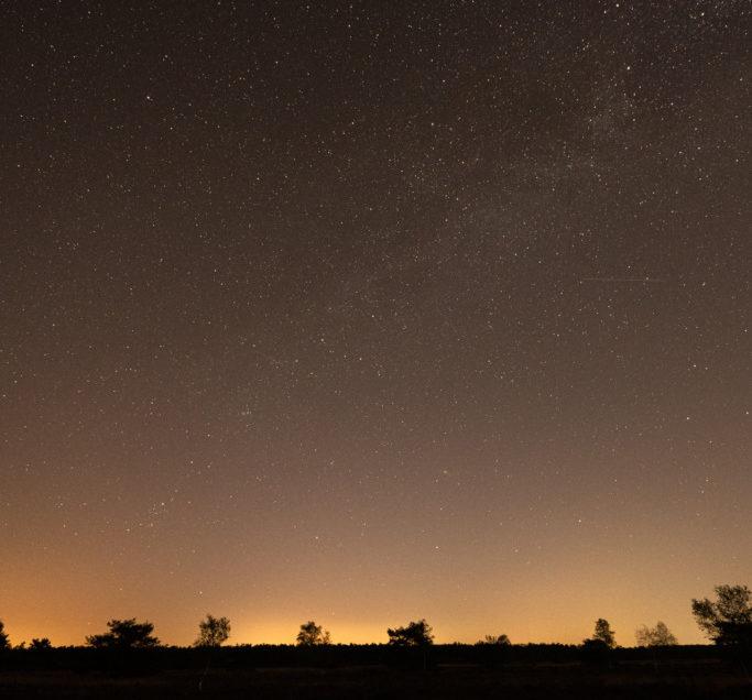 De natuur met zijn sterren